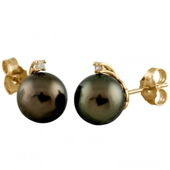 Bella Pearls 14ct yellow gold 10-11mm white Tahitian Pearl and diamond studs