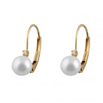 Bella Pearls 14ct yellow gold 5-6mm white akoya pearls earrings