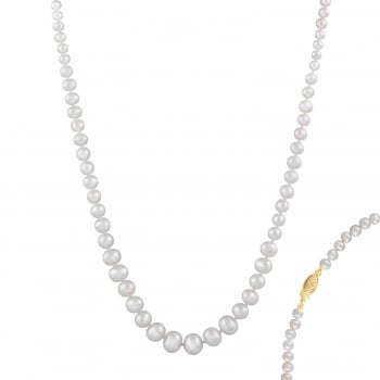Bella Pearls 14ct yellow gold 4-8mm white freshwater pearl necklace